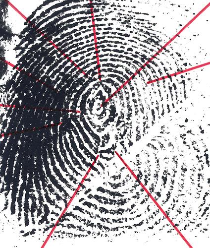 Bijna een vijfde van de Belgen staat in politiedatabank